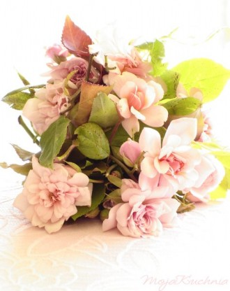 roseancienne